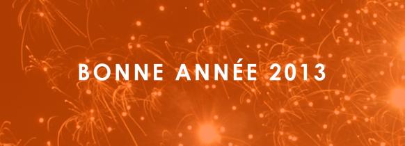 bonn-annee-2013-blog-comgom