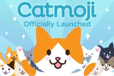 Catmoji-Cat-reseau-social-chats